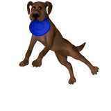 Cartoon Dog - Catching a Frisbee Royalty Free Stock Photography