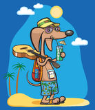 Cartoon dog character with cocktail at beach Stock Images