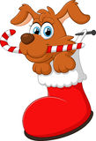 Cartoon dog christmas Royalty Free Stock Photos