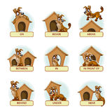 Cartoon dog in different poses to illustrate Stock Photo