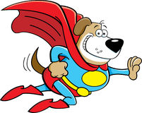 Cartoon dog dressed as a super hero. Royalty Free Stock Image