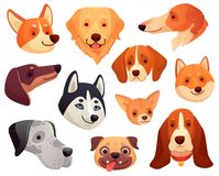 Cartoon dog head. Funny puppy pet muzzle, smiling dog face and dogs isolated vector illustration collection royalty free illustration