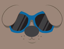 Cool Dog Sunglasses Stock Photography