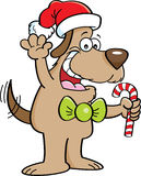Cartoon dog holding a candy cane Royalty Free Stock Photo