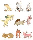 Cartoon dog icon. Vector drawing Stock Photography