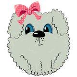 Cartoon dog. pet illustration Royalty Free Stock Image