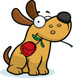 Cartoon Dog Rose Stock Images