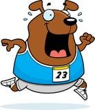 Cartoon Dog Running Race Royalty Free Stock Images