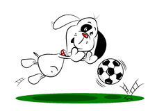 Cartoon Dog Saving a Football Royalty Free Stock Images