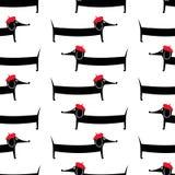 Cartoon dog seamless pattern. Cute parisian dachshund vector illustration. Stock Image