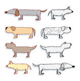 Cartoon dog set, Vector illustration. Royalty Free Stock Photography