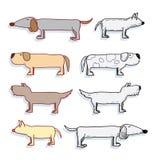 Cartoon dog set, Vector illustration. Royalty Free Stock Photography