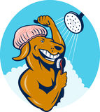 Cartoon dog singing shower scrubbing brush Stock Photo