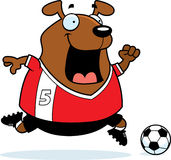 Cartoon Dog Soccer Stock Image