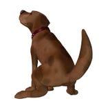 Cartoon Dog - Squatting Royalty Free Stock Photo