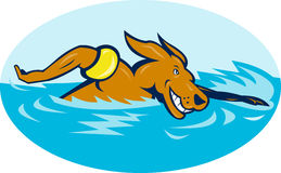 Cartoon dog swimming Stock Photos