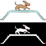 Cartoon Dog Training on Ramp Stock Photos