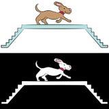 Cartoon Dog Training on Ramp Stock Photos
