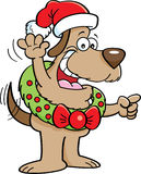 Cartoon dog wearing a Christmas wreath. Stock Photos