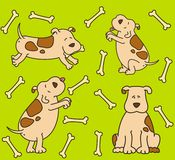 Cartoon dogs. Illustration on a  background for a design Royalty Free Stock Photography
