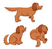 Cartoon dogs. Cartoon dog in different poses. Vector EPS8 Stock Photo