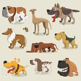 Cartoon dogs collection. This is file of EPS8 format Royalty Free Stock Photos