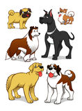 Cartoon dogs. Collection of six  different cartoon vector dogs Royalty Free Stock Photography