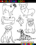 Cartoon Dogs for Coloring Book or Page. Coloring Book or Page Cartoon Illustration of Funny Purebred Dogs for Children Stock Photos