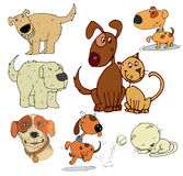 Cartoon dogs. Cartoon of funny different dogs set Royalty Free Stock Images