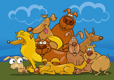 Cartoon dogs group Royalty Free Stock Photos