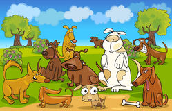 Cartoon dogs on the meadow