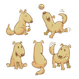 Cartoon dogs set. Cartoon funny dogs set. Vector image. Cute  puppy in different poses Stock Photography