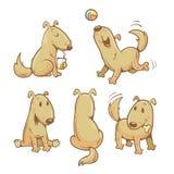 Cartoon dogs set. Stock Photography