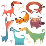 Cartoon dogs set. Vector illustrations of dogs collections. Colorful images of dogs Royalty Free Stock Photography
