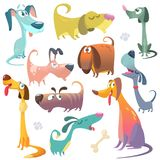Cartoon dogs set. Vector illustrations of dogs icons. Retriever dachshund terrier pitbull spaniel bulldog basset hound afghan hound Royalty Free Stock Image