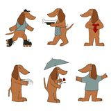 Cartoon dogs. Stock Images