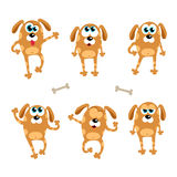 Cartoon dogs - vector set. Isolated illustration Stock Image