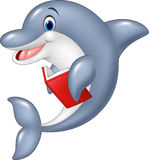 Cartoon dolphin holding book isolated on white background Royalty Free Stock Image