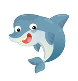 Cartoon dolphin swimming and looking Stock Images