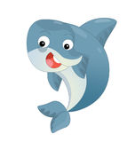 Cartoon dolphin swimming and looking Royalty Free Stock Photos