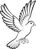 Cartoon Dove birds logo for peace concept and wedding design. Illustration of Cartoon Dove birds logo for peace concept and wedding design Royalty Free Stock Photography