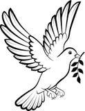 Cartoon Dove birds logo for peace concept and wedding design Royalty Free Stock Photos