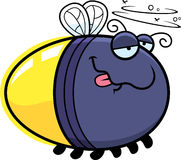 Cartoon Drunk Firefly. A cartoon illustration of a firefly looking drunk Stock Photography