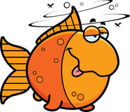 Cartoon Drunk Goldfish Stock Photography