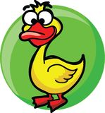 Cartoon duck,vector Royalty Free Stock Photography