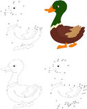 Cartoon duck. Coloring book and dot to dot game for kids Royalty Free Stock Image