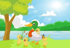 Free Cartoon Duck Family On The River Bank Stock Photos - 72178593