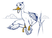 Cartoon duck flight Stock Photography