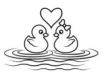 Duck cartoon outline. Cartoon duck lover for coloring book page, cute couple animal outline swimming Stock Images