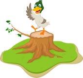 Cartoon duck posing on tree stump Royalty Free Stock Image